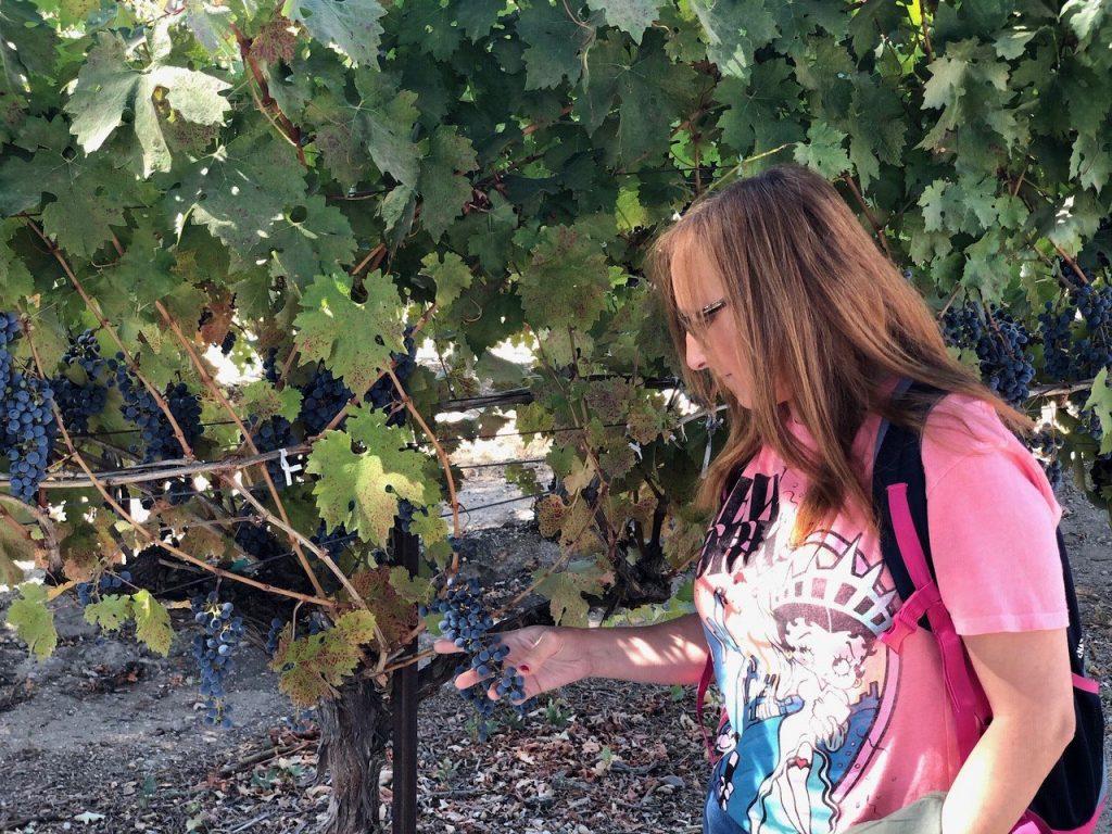 Tocando las uvas